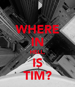 Poster: WHERE IN HELL, IS TIM?