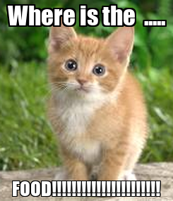 Poster: Where is the  ..... FOOD!!!!!!!!!!!!!!!!!!!!!!