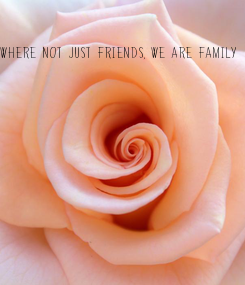 Poster: Where not just friends, we are family
