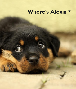 Poster: Where's Alexia ?