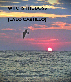 Poster: WHO IS THE BOSS