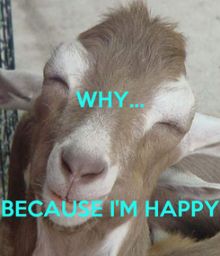 Poster: WHY...    BECAUSE I'M HAPPY