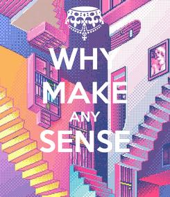 Poster: WHY MAKE ANY SENSE