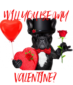 Poster: WILL YOU BE MY     VALENTINE?