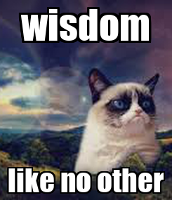 Poster: wisdom like no other