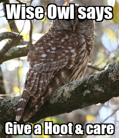 Poster: Wise Owl says Give a Hoot & care