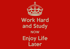 Poster: Work Hard and Study NOW Enjoy Life Later