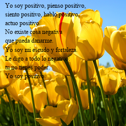 Poster: Yo soy positivo, pienso positivo, siento positivo, hablo positivo, actuo positivo. No existe cosa negativa  que pueda danarme. Yo soy mi escudo y fortaleza. Le digo a todo lo negativo:  tu no tienes poder. Yo soy