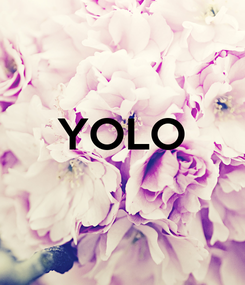 Poster:  YOLO