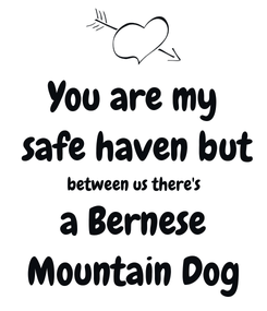 Poster: You are my  safe haven but between us there's  a Bernese  Mountain Dog