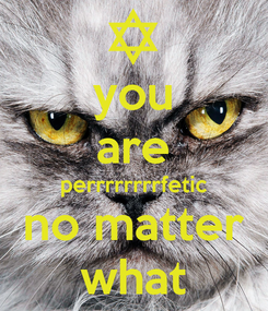 Poster: you are perrrrrrrrfetic no matter what
