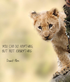Poster: YOU CAN DO ANYTHING, BUT NOT EVERYTHING  -David Allen