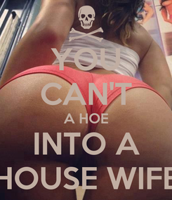 Poster: YOU CAN'T A HOE INTO A HOUSE WIFE