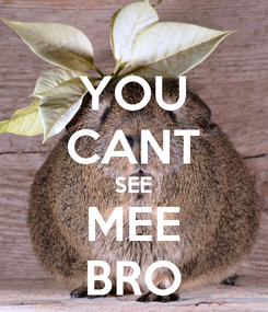 Poster: YOU CANT SEE MEE BRO