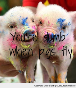 Poster: You're dumb  when pigs fly