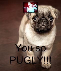 Poster:    You so PUGLY!!!