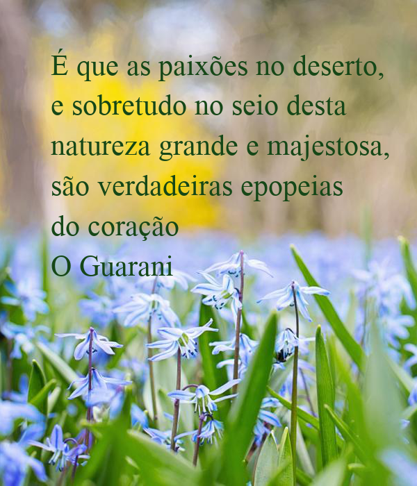 É que as paixões no deserto, e sobretudo no seio desta natureza grande e majestosa, são verdadeiras epopeias do coração O Guarani