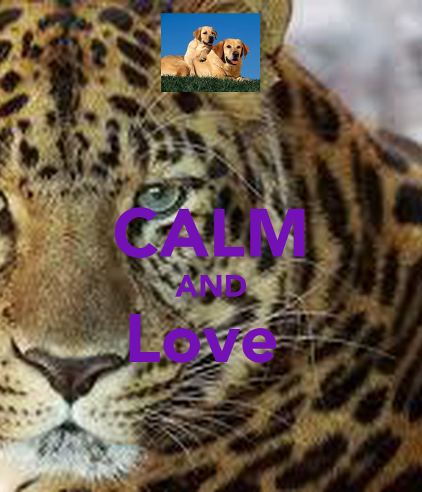 CALM AND Love
