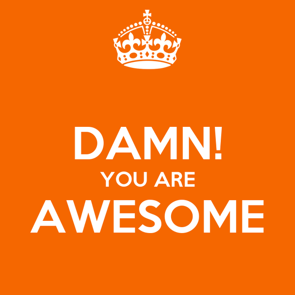 You Are Awesome: DAMN! YOU ARE AWESOME Poster