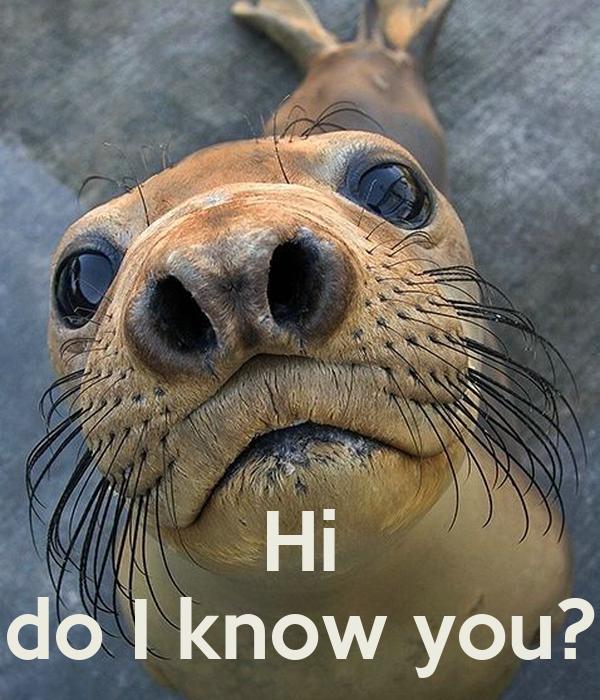 Hi do I know you?