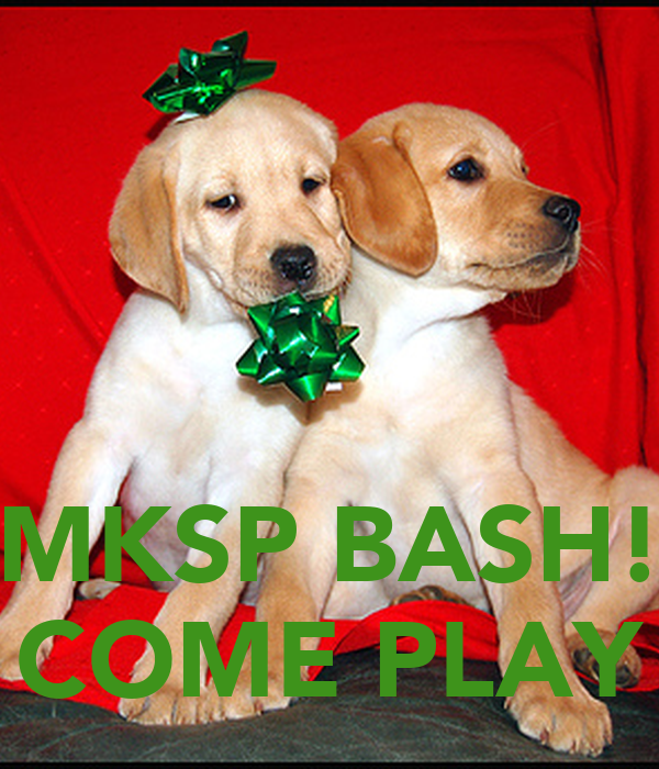MKSP BASH! COME PLAY