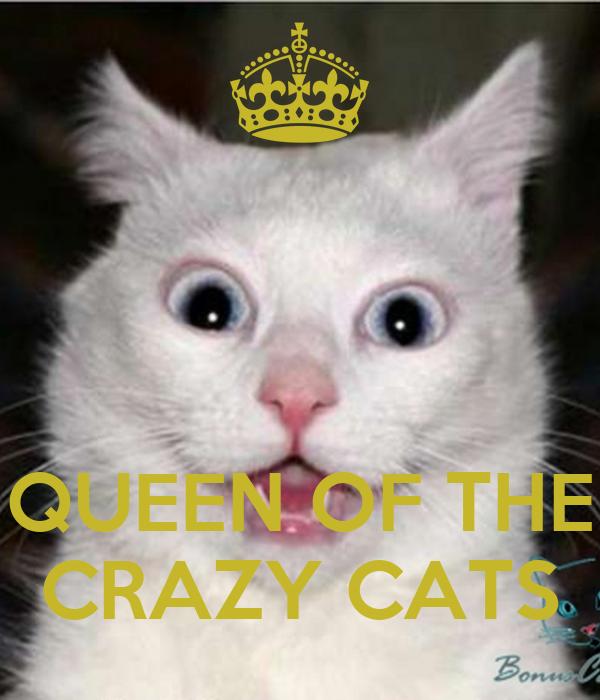 QUEEN OF THE CRAZY CATS