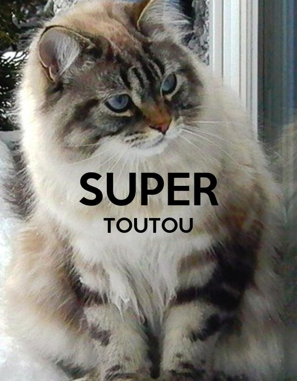 SUPER TOUTOU