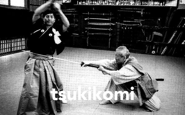 tsukikomi