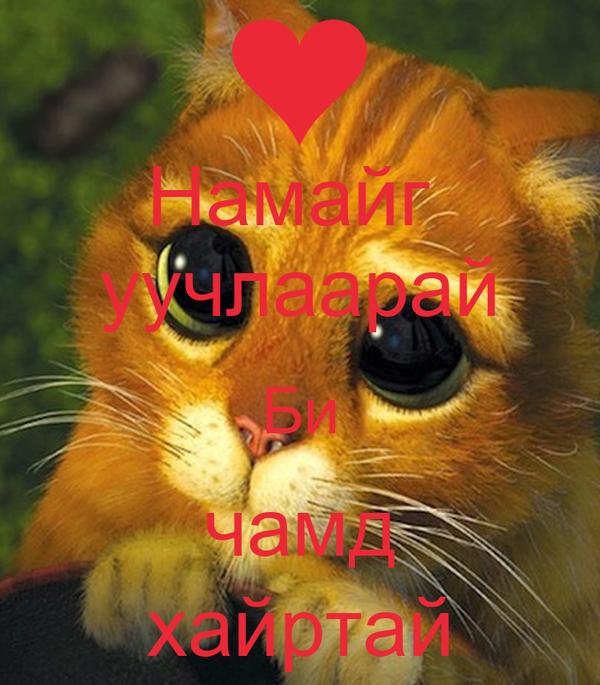 Намайг  уучлаарай Би чамд хайртай