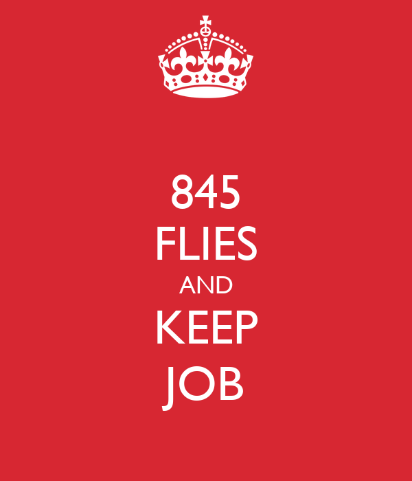 845 FLIES AND KEEP JOB