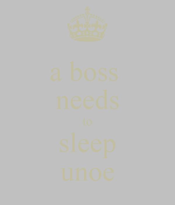 a boss  needs to sleep unoe