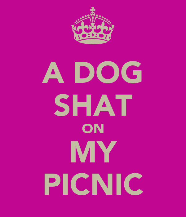 A DOG SHAT ON MY PICNIC
