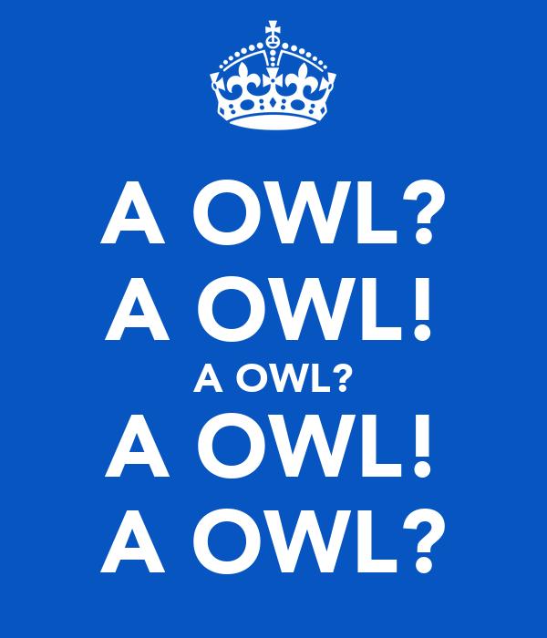A OWL? A OWL! A OWL? A OWL! A OWL?