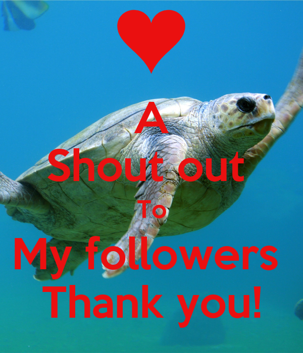 A Shout out  To My followers  Thank you!