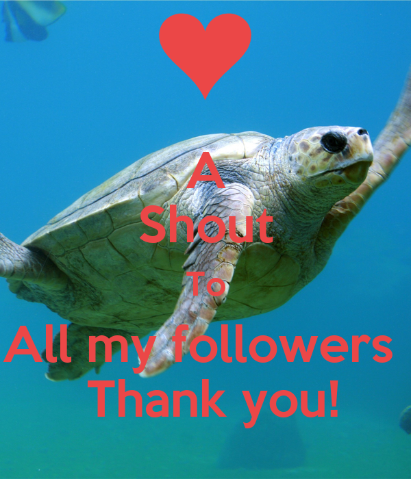 A Shout To All my followers   Thank you!
