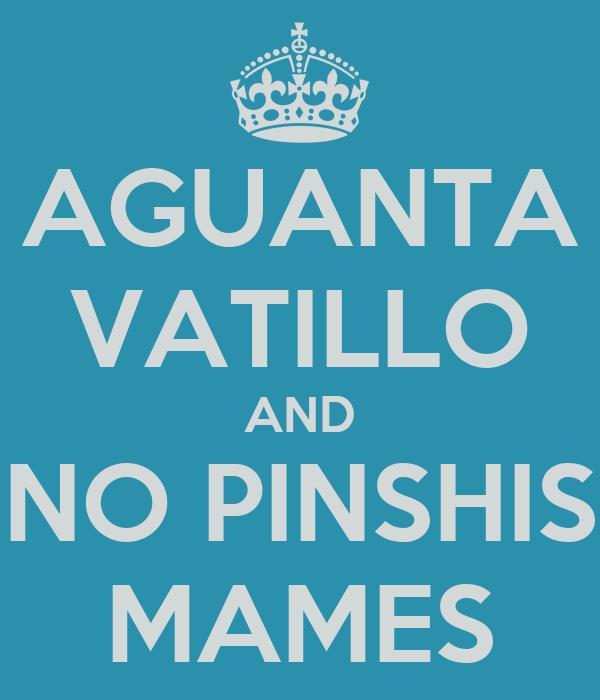 AGUANTA VATILLO AND NO PINSHIS MAMES