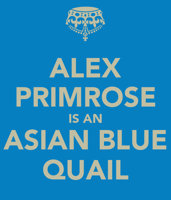 ALEX PRIMROSE IS AN ASIAN BLUE QUAIL