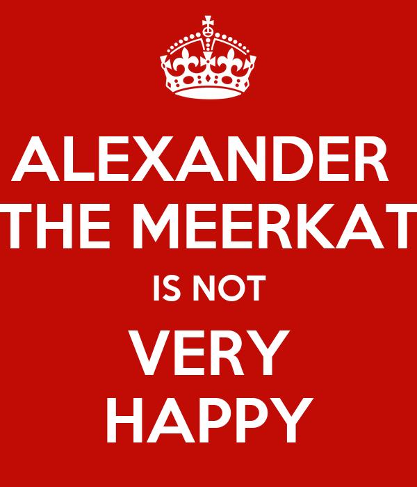 ALEXANDER  THE MEERKAT IS NOT VERY HAPPY