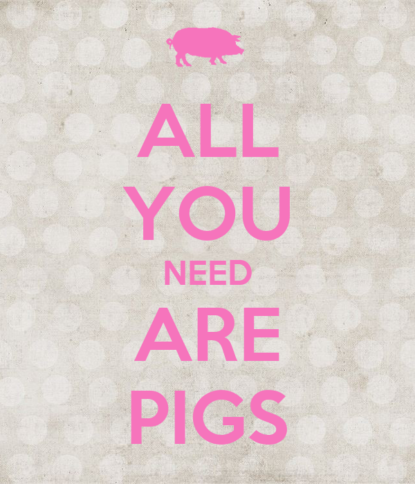 ALL YOU NEED ARE PIGS