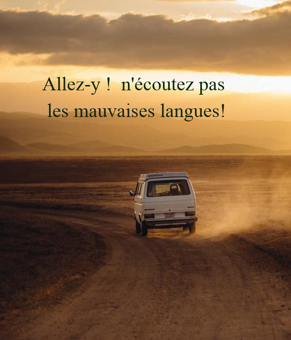 Allez-y !  n'écoutez pas  les mauvaises langues!