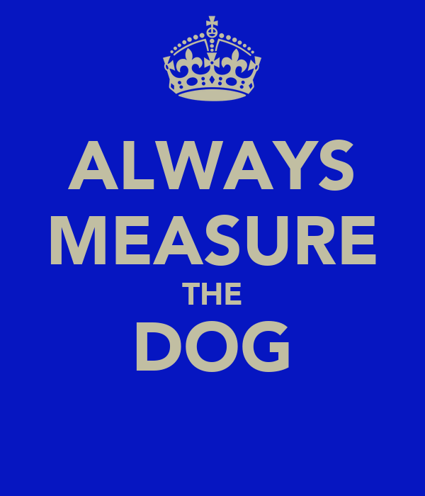 ALWAYS MEASURE THE DOG