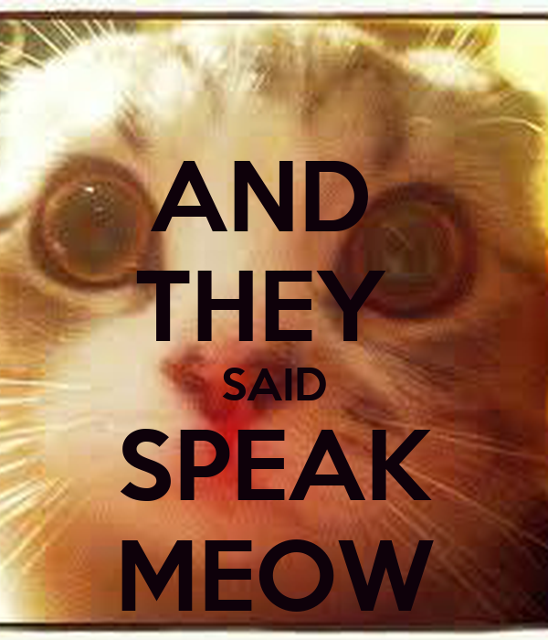 AND  THEY  SAID SPEAK MEOW