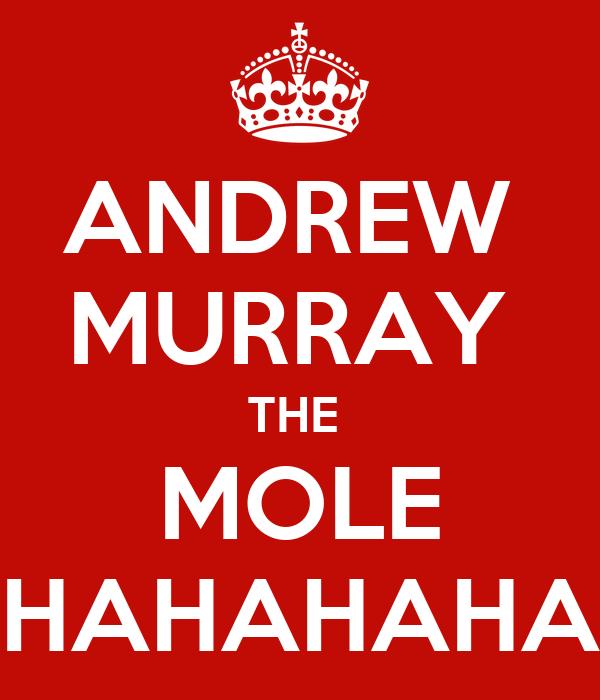 ANDREW  MURRAY  THE  MOLE HAHAHAHA