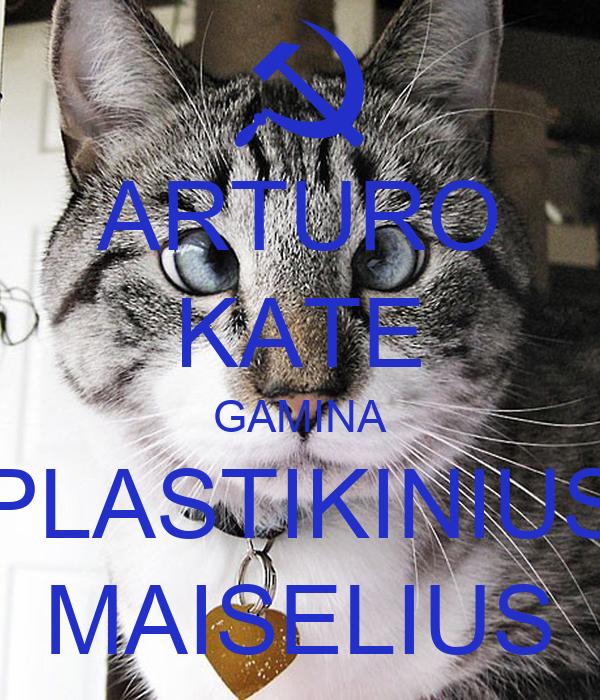 ARTURO KATE GAMINA PLASTIKINIUS MAISELIUS