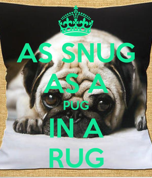 AS SNUG AS A PUG IN A RUG