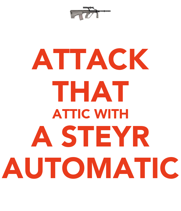 ATTACK THAT ATTIC WITH A STEYR AUTOMATIC