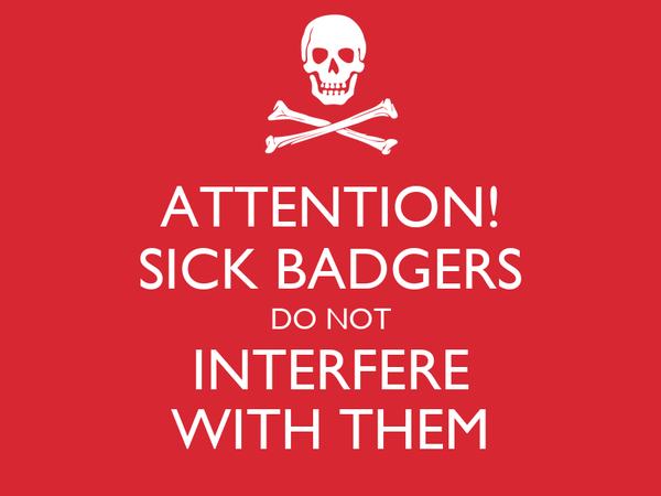 ATTENTION! SICK BADGERS DO NOT INTERFERE WITH THEM