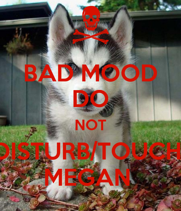 BAD MOOD DO NOT DISTURB/TOUCH  MEGAN