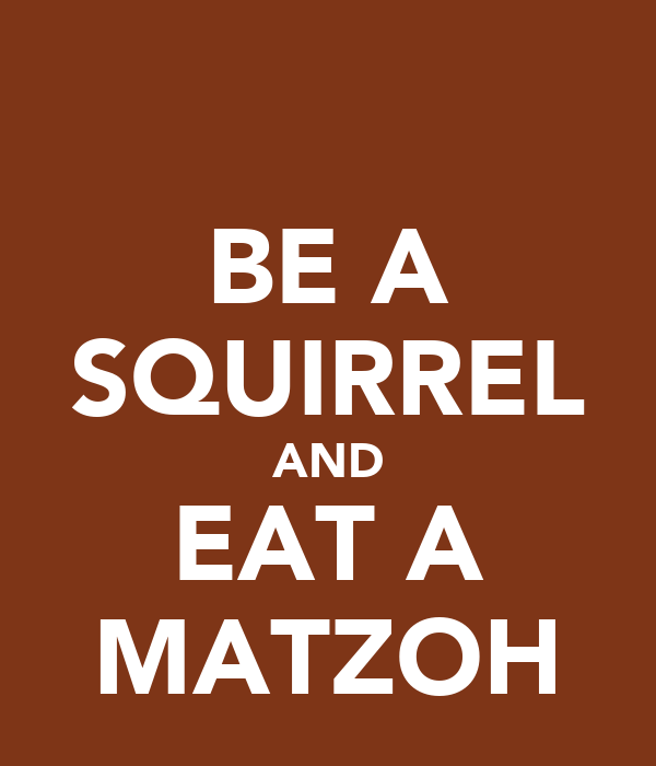 BE A SQUIRREL AND EAT A MATZOH