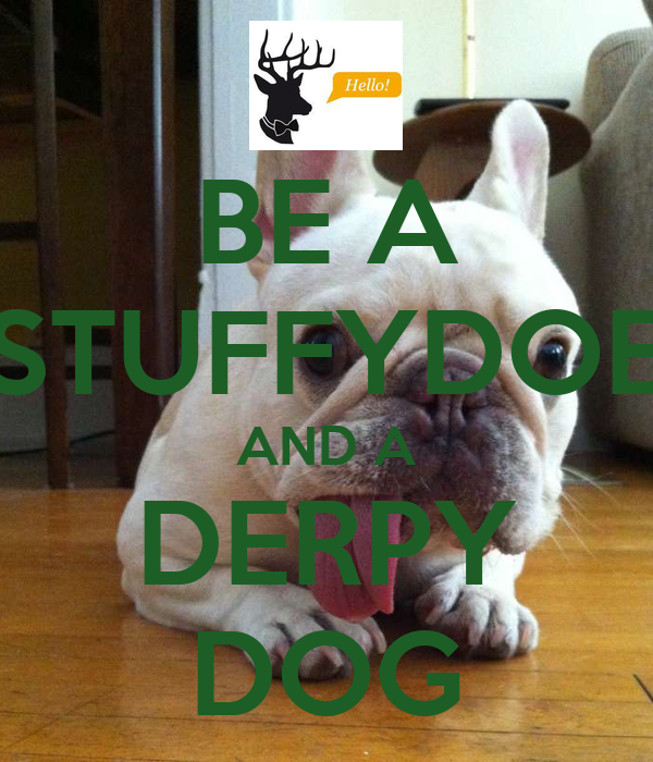 BE A STUFFYDOE AND A DERPY DOG